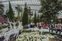 залив садовничает singapore Стоковое Фото