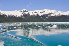 Залив Aialik, национальный парк фьордов Kenai (Аляска) стоковые фотографии rf