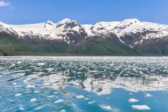 Залив Aialik, национальный парк фьордов Kenai (Аляска) стоковые фото
