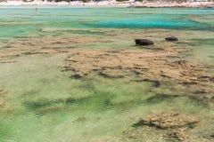 Залив Balos. Взгляд от острова Gramvousa, Крита в Греции. стоковые фото