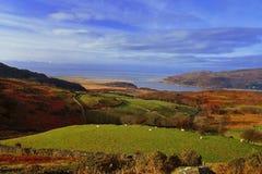 Залив Barmouth от Cregennen, Уэльса Стоковое фото RF