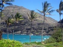 Залив Hanauma, Гаваи Стоковая Фотография RF