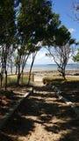 Залив Hervey стоковое изображение rf