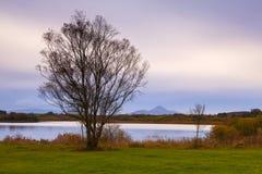 Залив Lannagh Стоковое Изображение RF