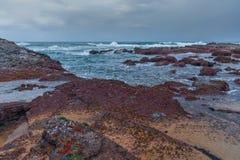 Залив Thompsons стоковое фото