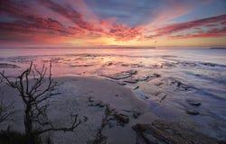 Залив Vincentia Jervis пункта плантации восхода солнца Стоковая Фотография