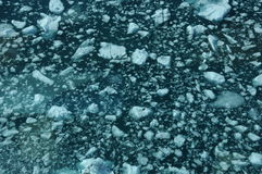 Залив Yakutat Стоковое Изображение