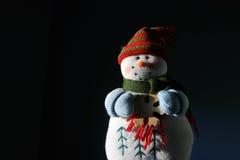 Залитый лунным светом снеговик Стоковая Фотография RF