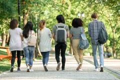 Заднее изображение взгляда многонациональной группы в составе молодые студенты Стоковые Фотографии RF