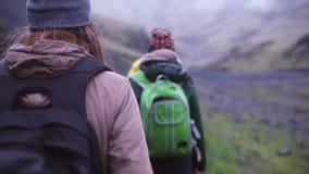 задний взгляд Группа в составе молодые люди на горе рано утром Путешественники идя вверх совместно видеоматериал