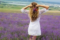 Задний взгляд девушки на фиолетовом поле лаванды Стоковая Фотография RF