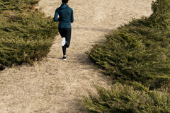 Задний взгляд женского бегуна Стоковое Изображение
