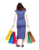 Задний взгляд женщины с хозяйственными сумками Стоковая Фотография