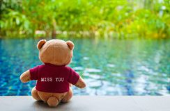 Задний взгляд плюшевого медвежонка нося красную футболку с t Стоковое фото RF