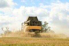 Задний взгляд современного нового вырезывания жатки зернокомбайна Голландии подрезывает Стоковое фото RF