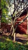 Задний двор стоковое фото rf
