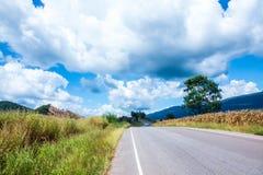 задний домашний путь Стоковая Фотография RF