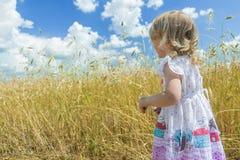 Задний портрет взгляда 2 года старой белокурой девушки смотря поле фермы страны Стоковое фото RF