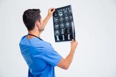 Задний портрет взгляда мужского доктора смотря изображение рентгеновского снимка Стоковые Изображения RF