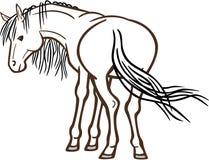 задний смотреть лошади иллюстрация вектора