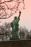 задняя статуя вольности стоковое изображение