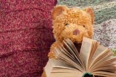 задняя школа к связанное одеяло Плюшевый медвежонок читая открытую книгу hardback Скопируйте космос для текста Стоковая Фотография RF