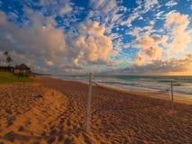 залп спорта charactetrs шаржа пляжа смешной Стоковые Изображения RF