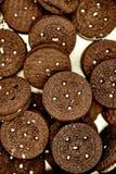 Залуживанные печенья Стоковые Фото