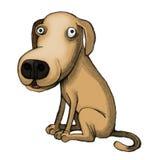 Задумчивый щенок Стоковые Фотографии RF