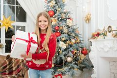 За утро до Xmas балерина немногая счастливое Новый Год Зима покупки xmas онлайн Праздник семьи Рождественская елка и стоковые фото