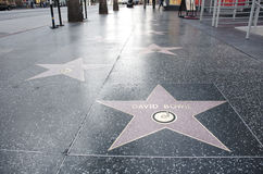 звезда Давида s bowie Стоковое фото RF