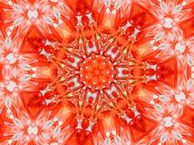звезда красного цвета мандала Стоковые Фотографии RF
