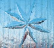 звезда льда Стоковое Изображение