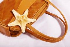 звезда моря мешка Стоковая Фотография RF