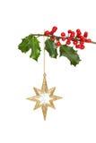 звезда падуба золота Стоковые Фото
