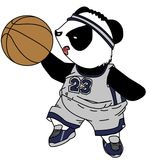 звезда панды баскетбола Стоковая Фотография