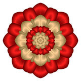 звезда сатинировки мандала букета флористическая Стоковое фото RF