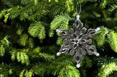 звезда серебра формы орнамента рождества Стоковые Изображения RF