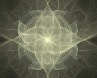 звезда цветка Стоковые Изображения RF