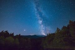 Звездная синь дерева древесин неба стоковое изображение rf