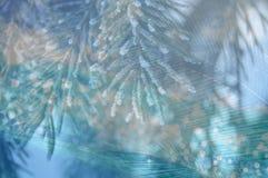 звезды абстрактной картины конструкции украшения рождества предпосылки темной красные белые ветви сосны и ветви ладони на голубом Стоковая Фотография