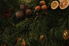 звезды абстрактной картины конструкции украшения рождества предпосылки темной красные белые Торжество концепции рождества Ель рож Стоковые Фотографии RF