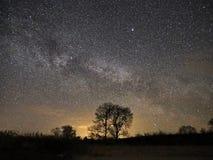 Звезды и млечный путь ночного неба наблюдающ, созвездие Lyra стоковые изображения rf