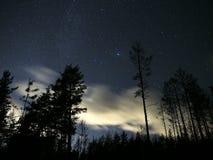 Звезды и облака ночного неба над лесом Vega играют главные роли созвездие Lyra Стоковые Фото