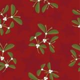 звезды картины mistletoe Стоковые Изображения