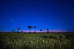 Звезды над прерией болотистых низменностей Стоковое Изображение