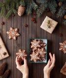 Звезды пряника рождества в коробке Стоковые Фотографии RF