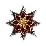 звезды ninja Стоковая Фотография