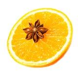 Звезда анисовки и свежий апельсин, специи рождества для горячих обдумыванных wi Стоковые Изображения