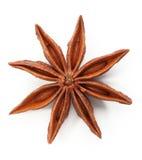 звезда анисовки Стоковое Изображение RF
